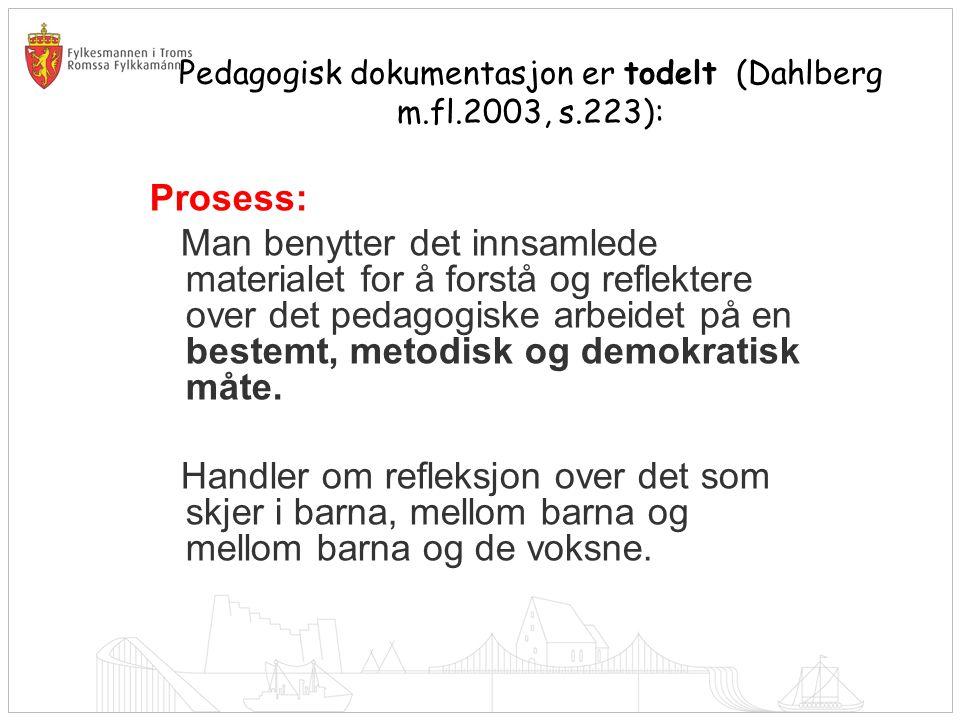 Pedagogisk dokumentasjon er todelt (Dahlberg m.fl.2003, s.223):
