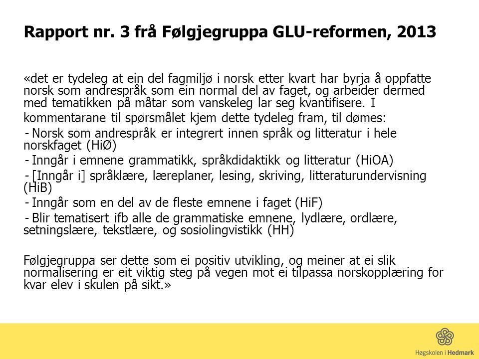 Rapport nr. 3 frå Følgjegruppa GLU-reformen, 2013