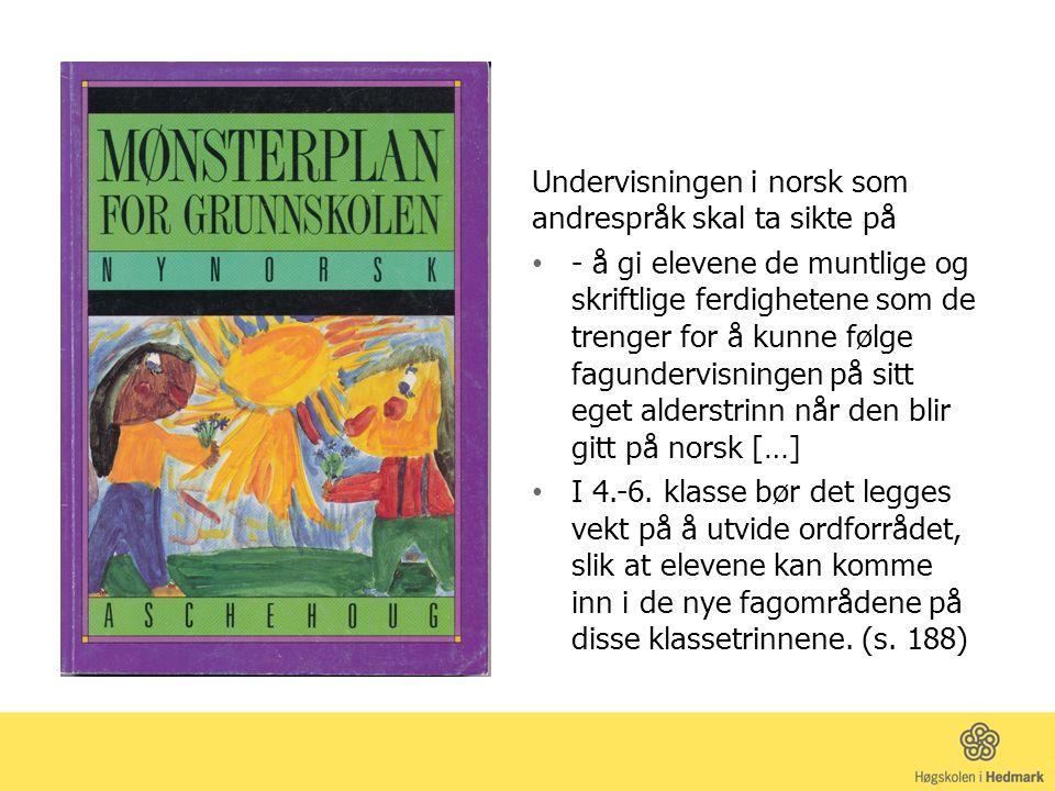 Undervisningen i norsk som andrespråk skal ta sikte på