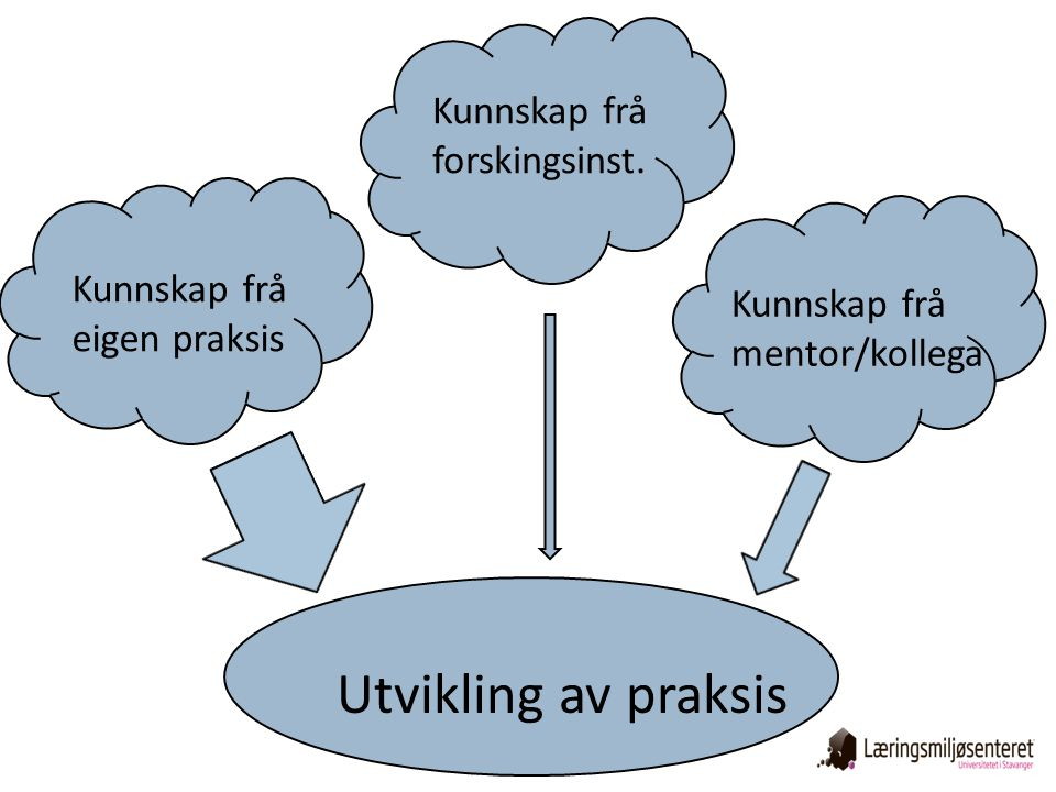 Utvikling av praksis Kunnskap frå forskingsinst.