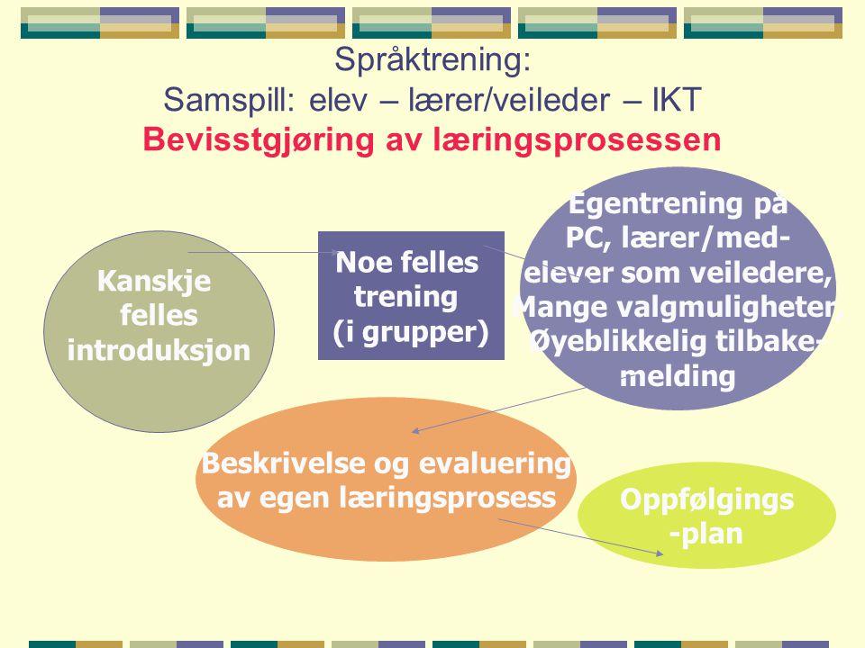 Øyeblikkelig tilbake- Beskrivelse og evaluering av egen læringsprosess