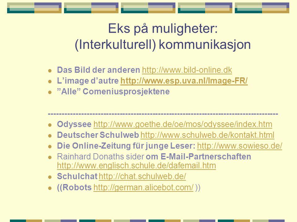 Eks på muligheter: (Interkulturell) kommunikasjon