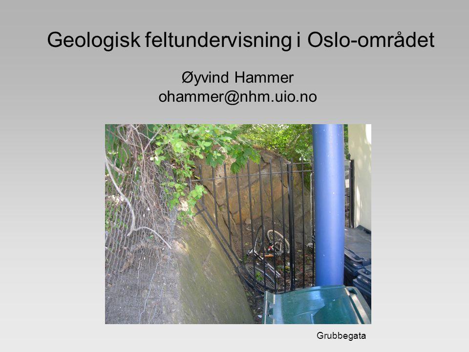 Geologisk feltundervisning i Oslo-området