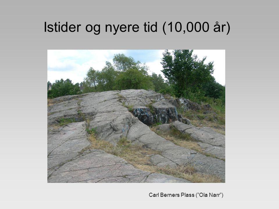 Istider og nyere tid (10,000 år)