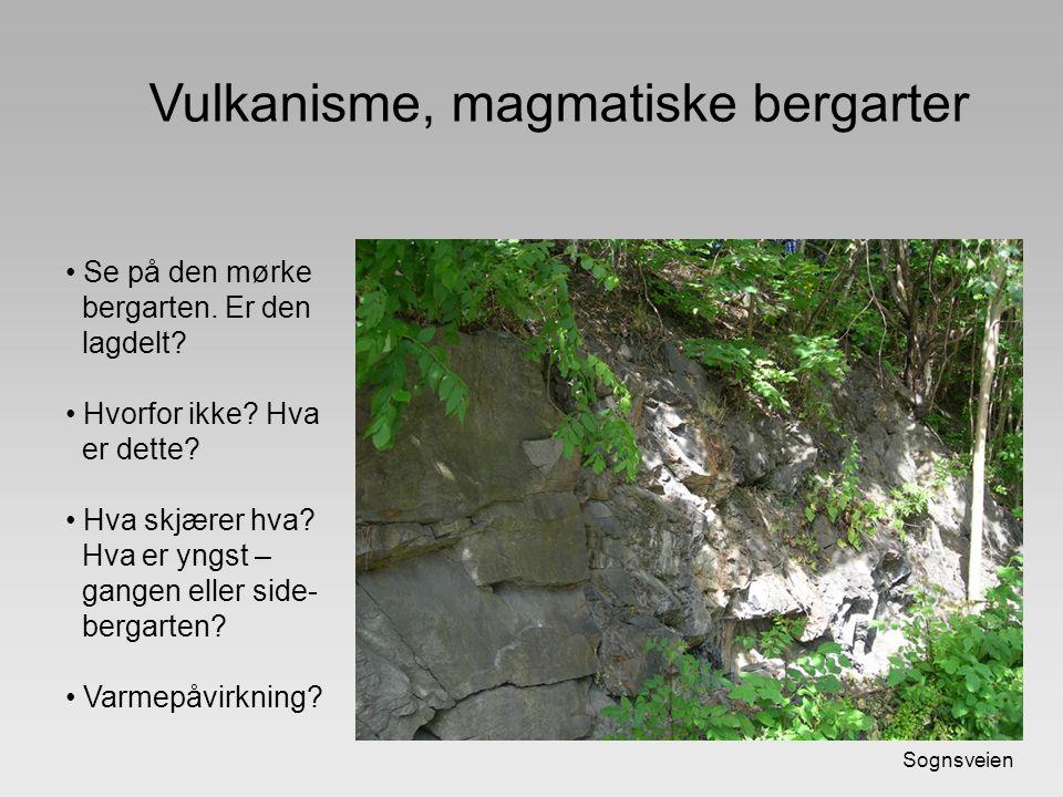 Vulkanisme, magmatiske bergarter