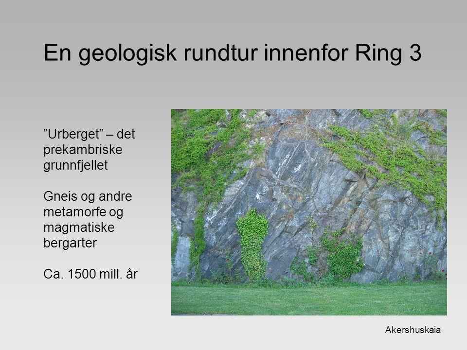 En geologisk rundtur innenfor Ring 3