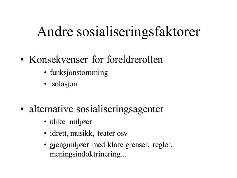 Andre sosialiseringsfaktorer