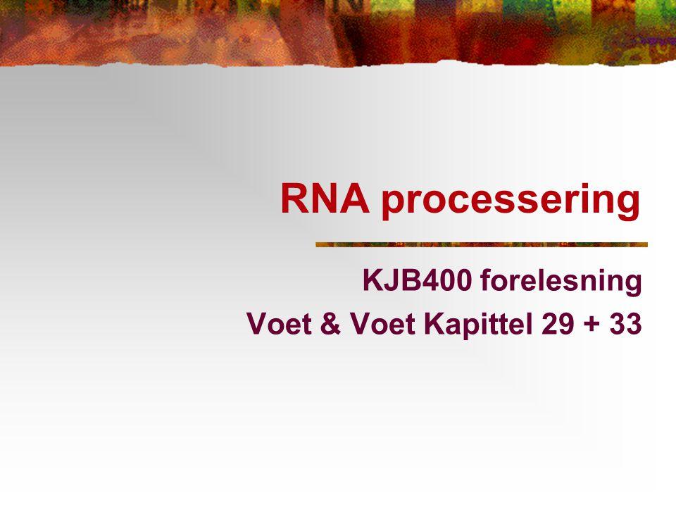 KJB400 forelesning Voet & Voet Kapittel 29 + 33