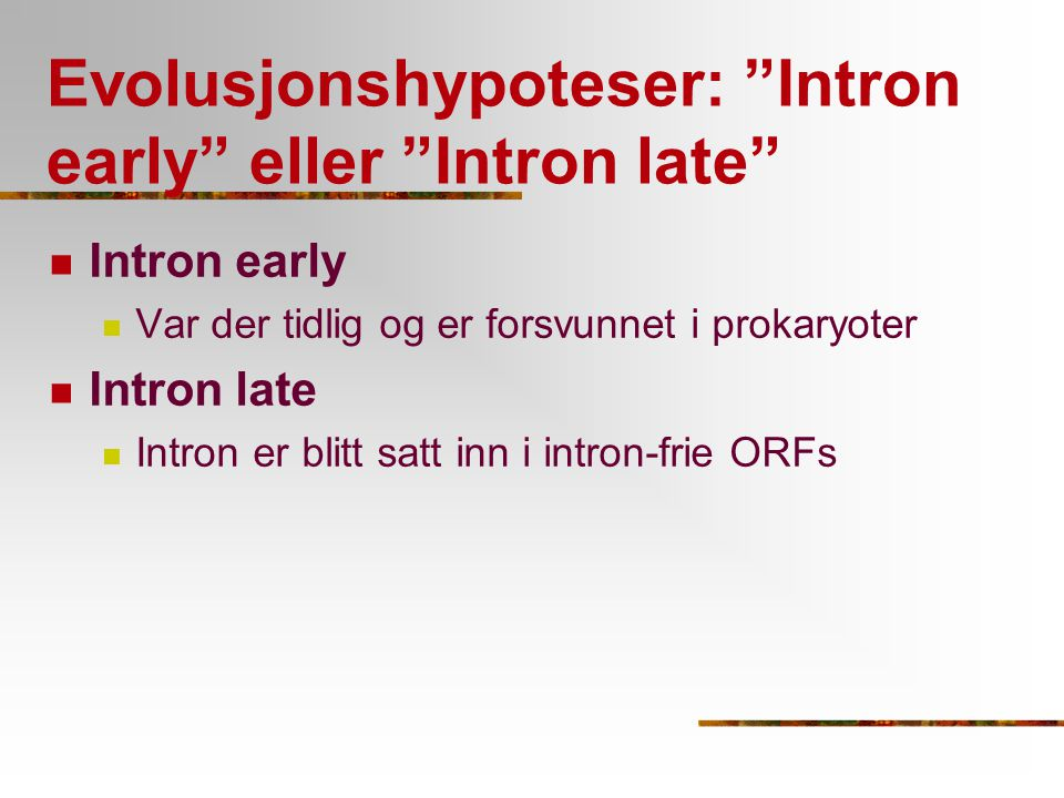 Evolusjonshypoteser: Intron early eller Intron late