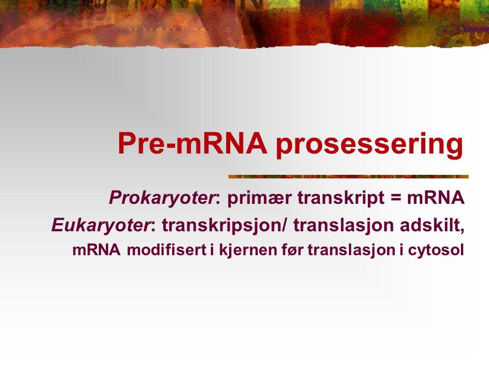 Pre-mRNA prosessering