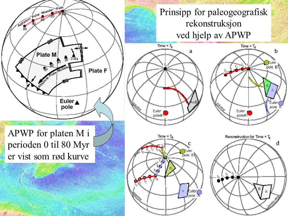 Prinsipp for paleogeografisk