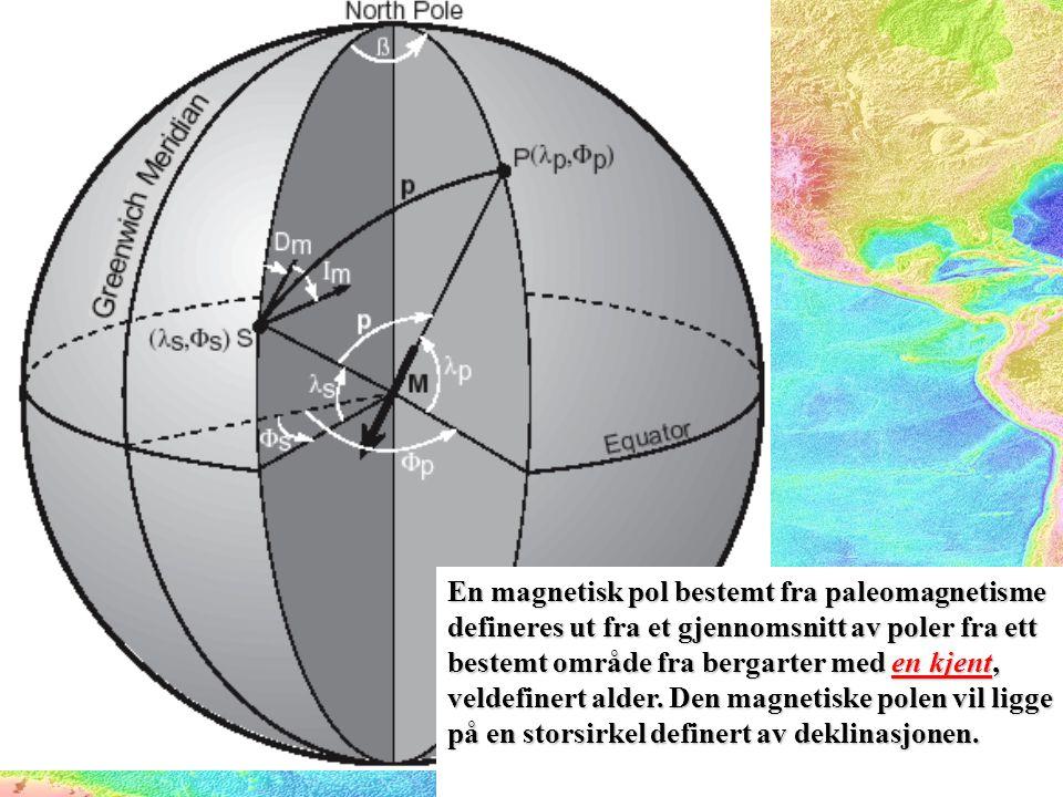En magnetisk pol bestemt fra paleomagnetisme