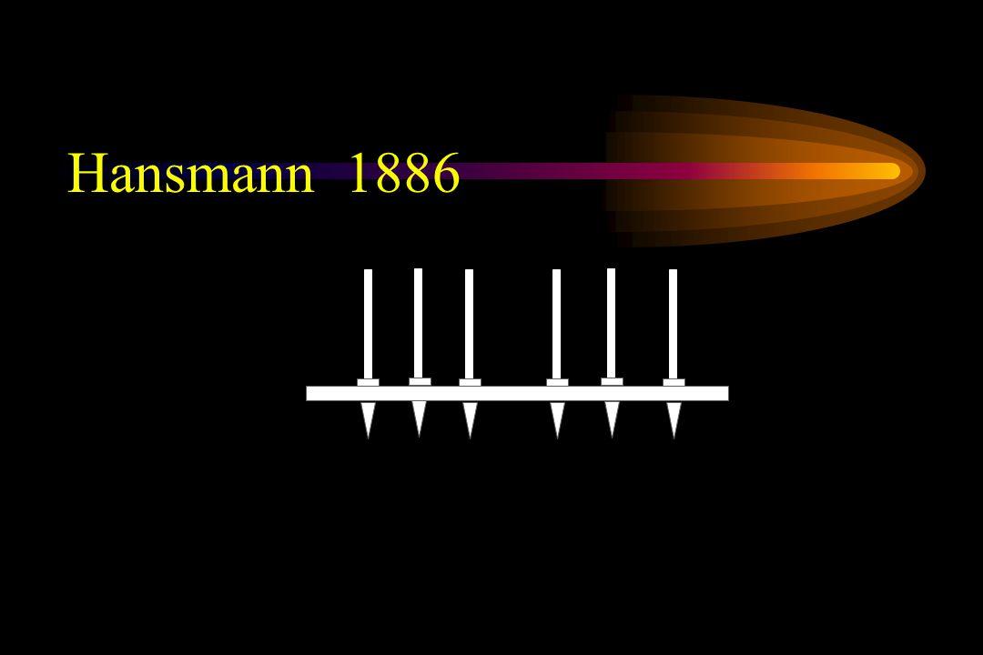 Hansmann 1886