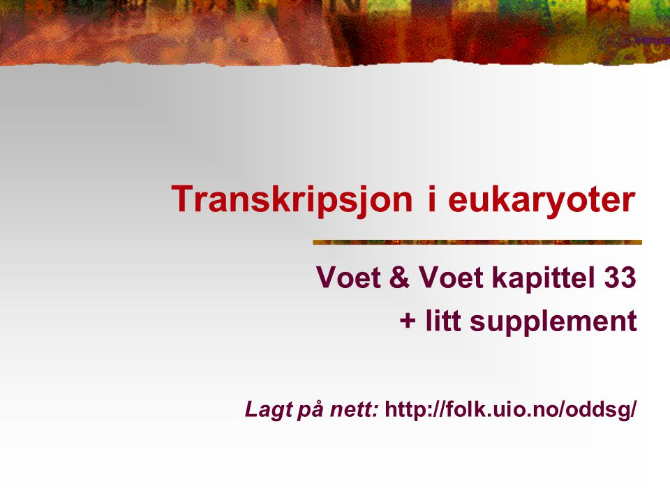 Transkripsjon i eukaryoter