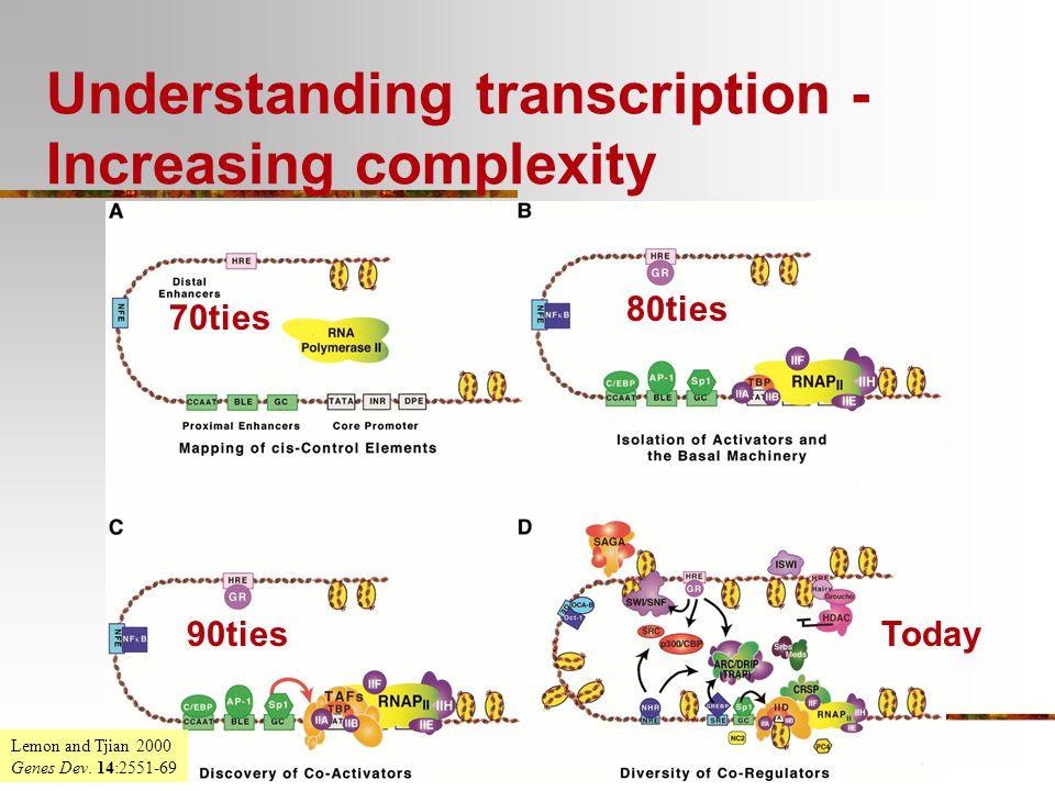 Understanding transcription - Increasing complexity