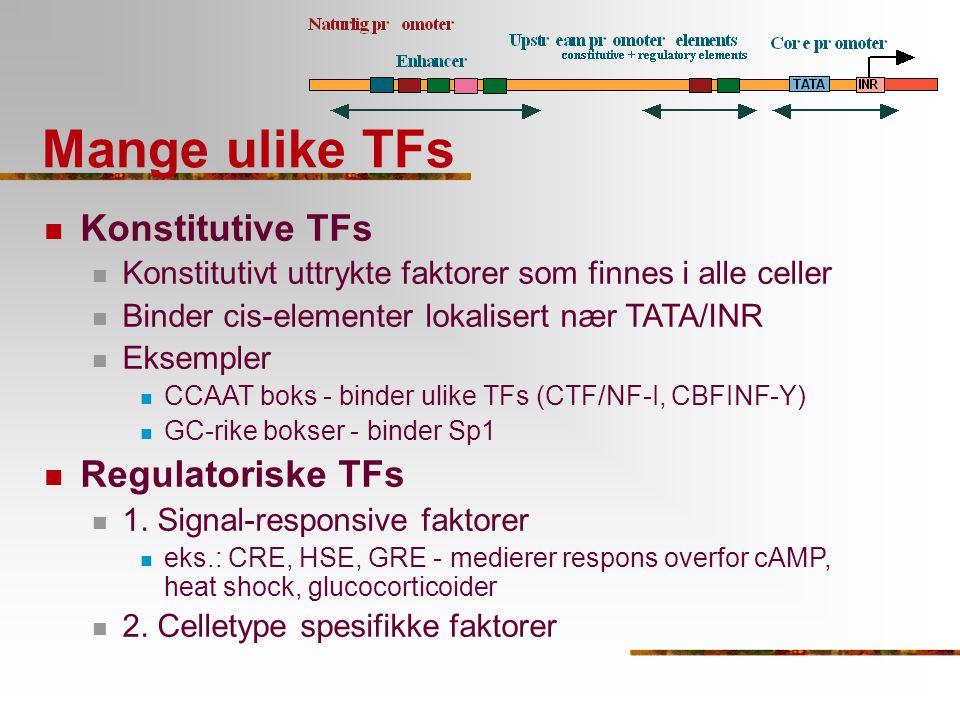 Mange ulike TFs Konstitutive TFs Regulatoriske TFs