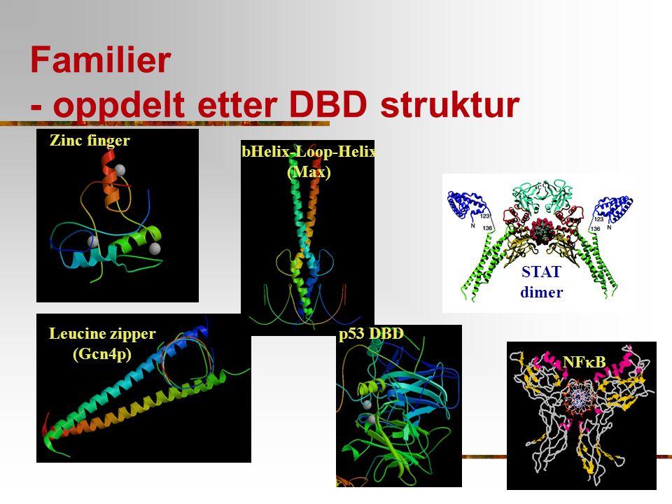 Familier - oppdelt etter DBD struktur