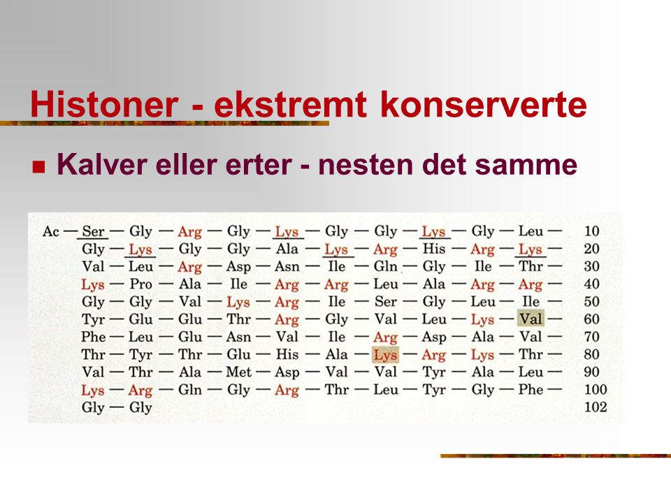 Histoner - ekstremt konserverte