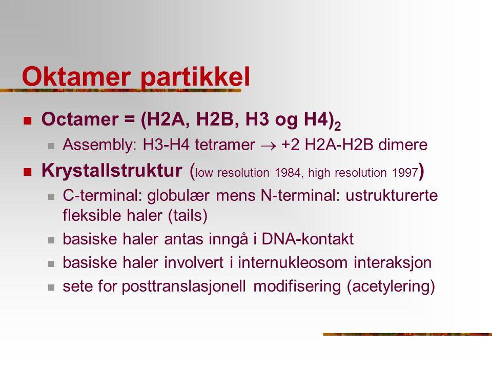 Oktamer partikkel Octamer = (H2A, H2B, H3 og H4)2