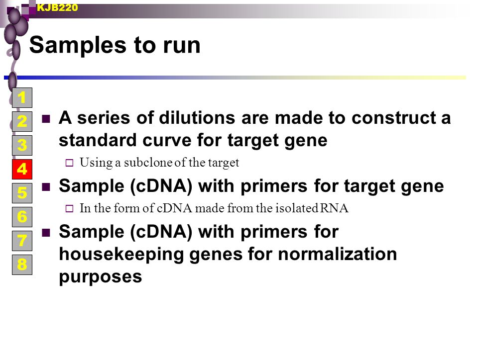 Samples to run 1. A series of dilutions are made to construct a standard curve for target gene. Using a subclone of the target.