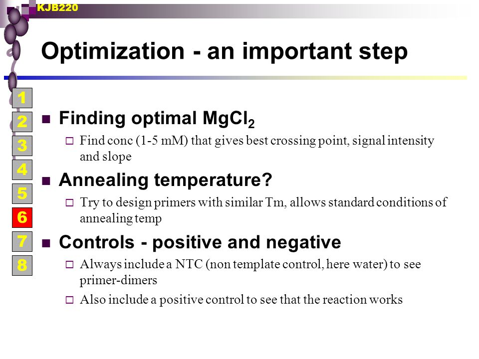 Optimization - an important step