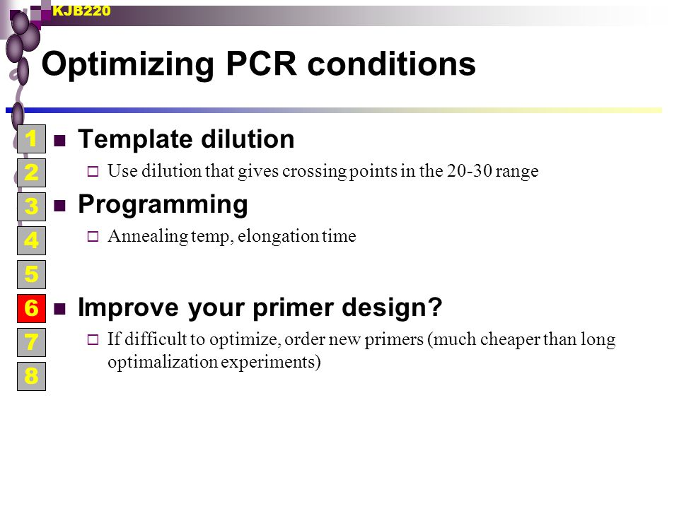 Optimizing PCR conditions