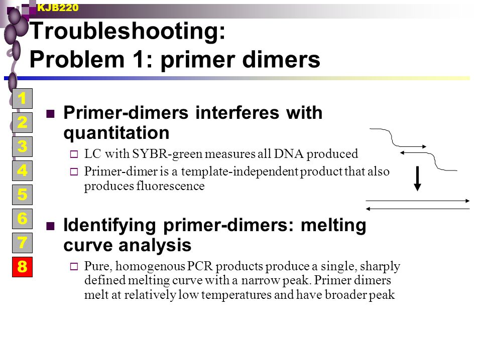 Troubleshooting: Problem 1: primer dimers
