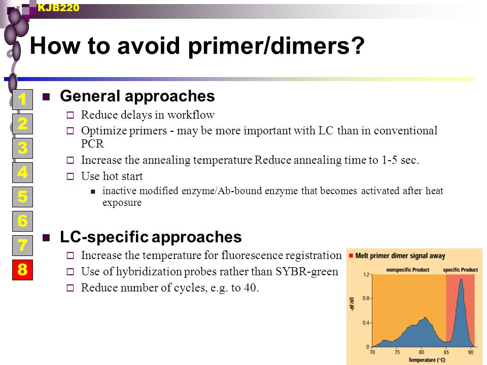 How to avoid primer/dimers