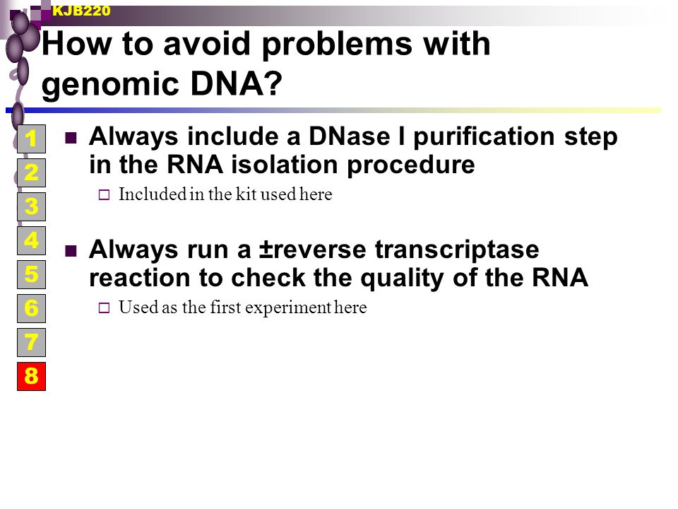 How to avoid problems with genomic DNA