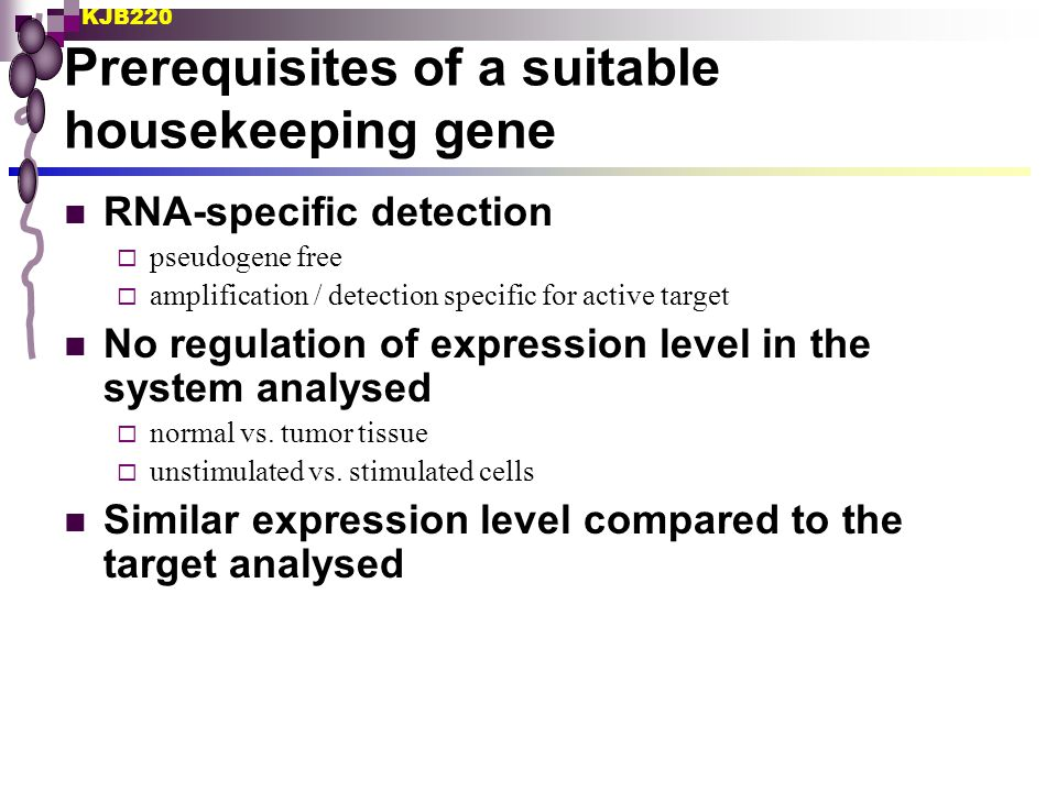 Prerequisites of a suitable housekeeping gene