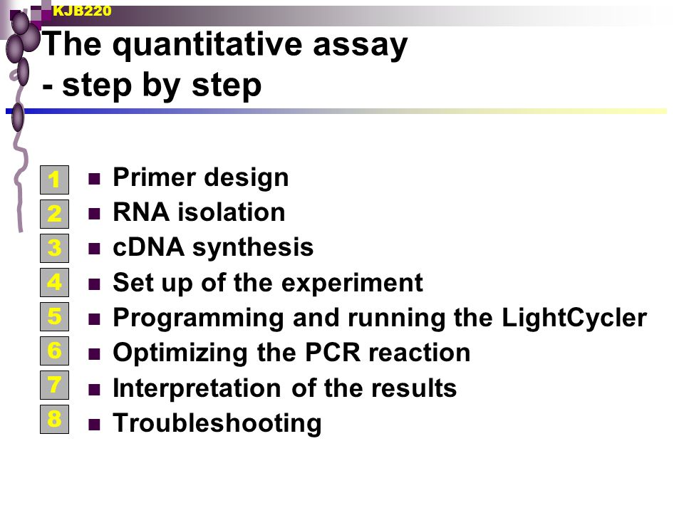 The quantitative assay - step by step