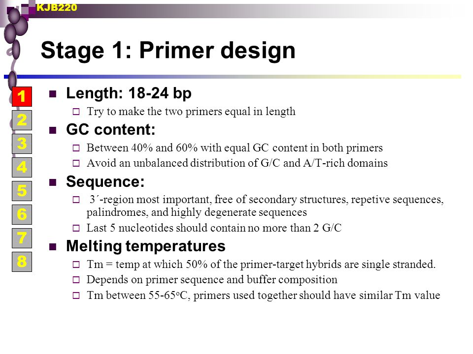 Stage 1: Primer design Length: 18-24 bp 1 GC content: 2 Sequence: 3 4