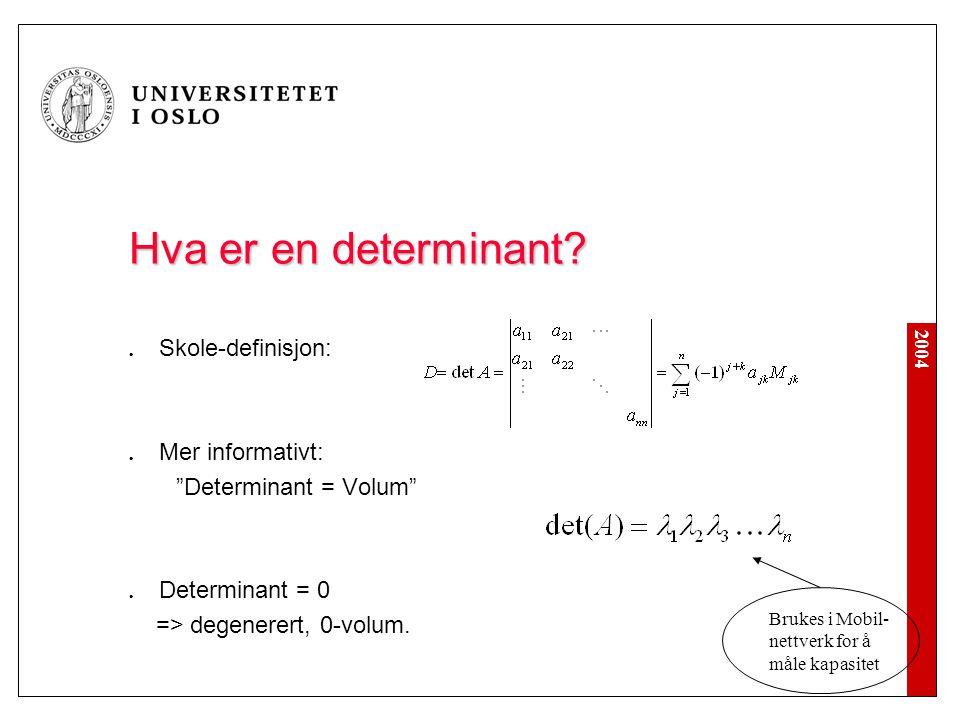 Hva er en determinant Skole-definisjon: Mer informativt: