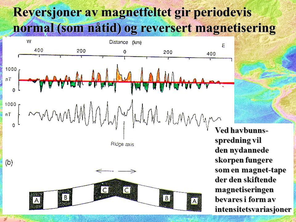 Reversjoner av magnetfeltet gir periodevis