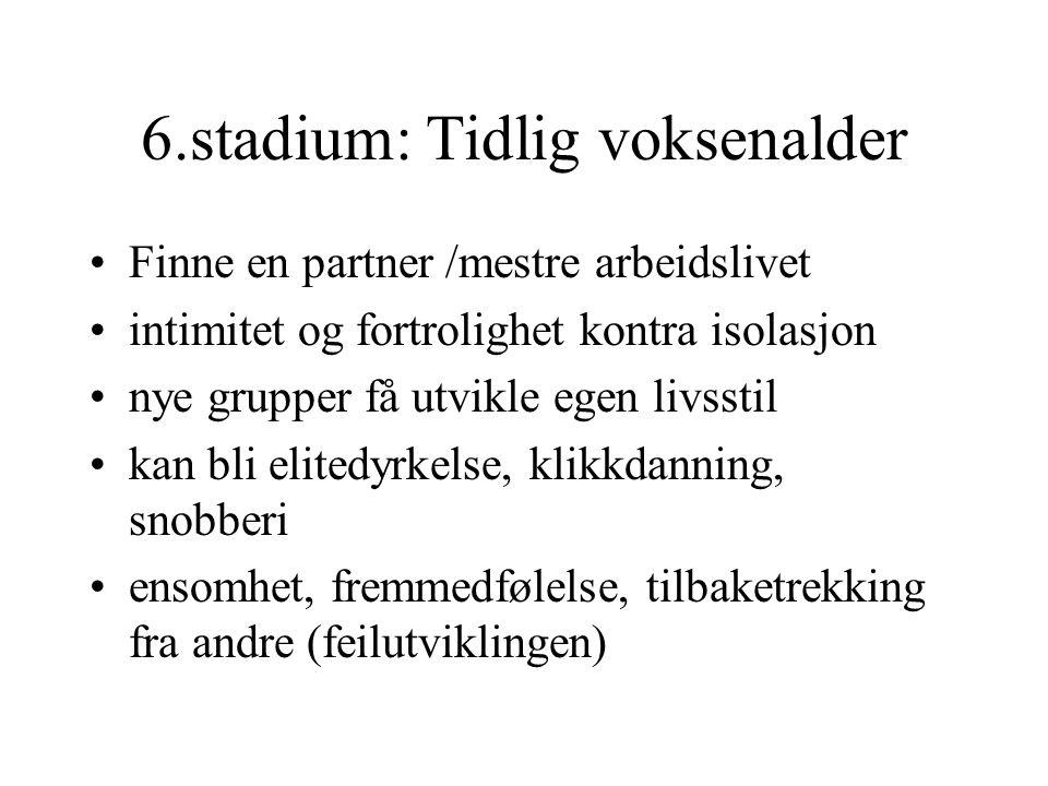 6.stadium: Tidlig voksenalder