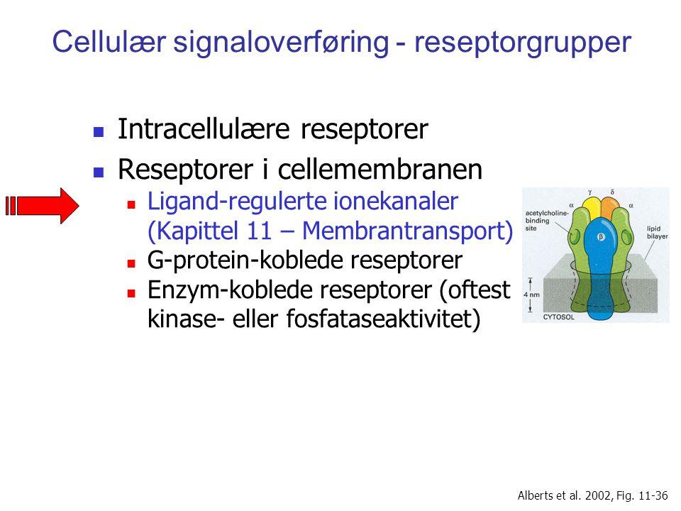 Cellulær signaloverføring - reseptorgrupper