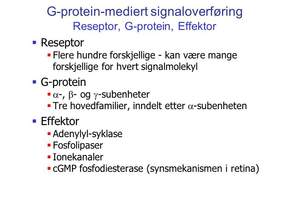 G-protein-mediert signaloverføring Reseptor, G-protein, Effektor