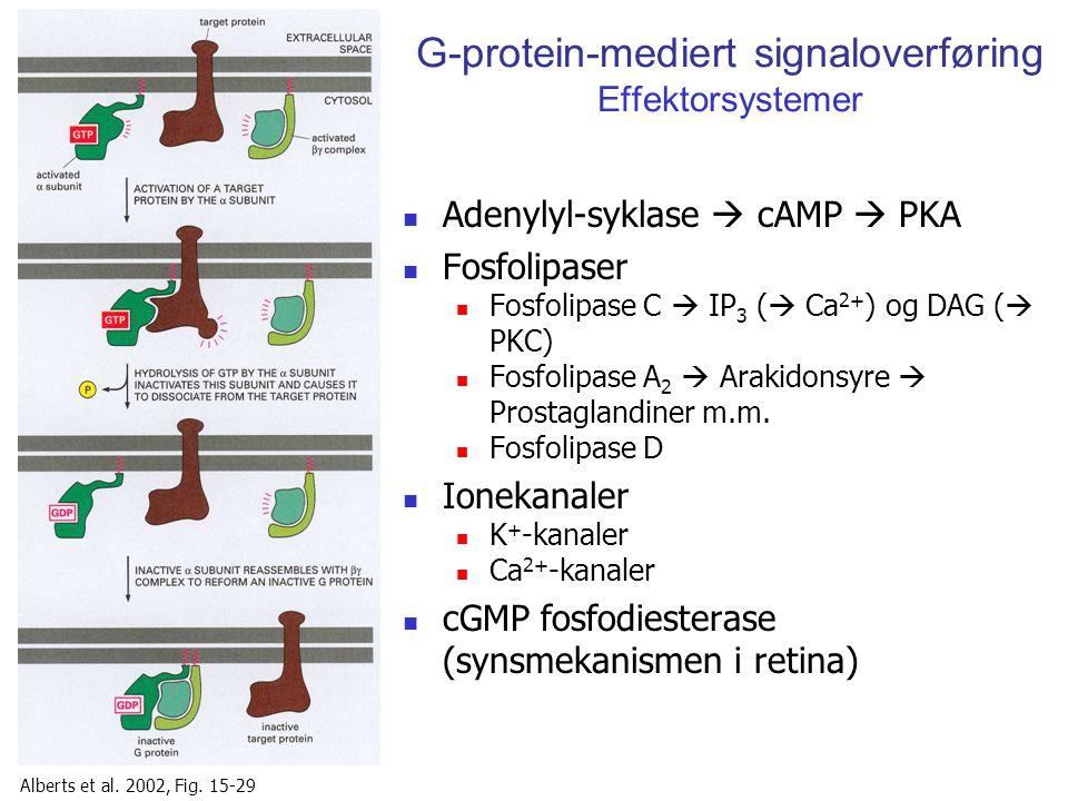 G-protein-mediert signaloverføring Effektorsystemer