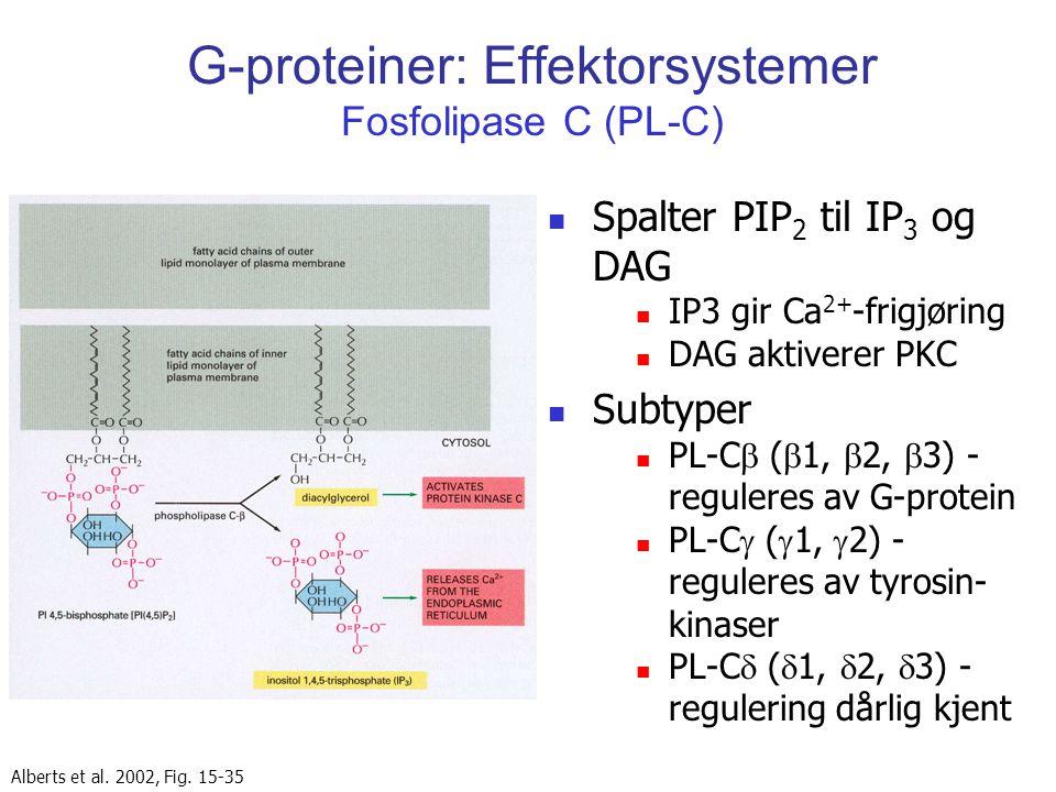 G-proteiner: Effektorsystemer Fosfolipase C (PL-C)