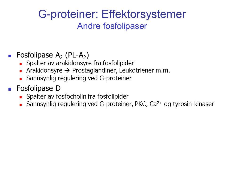 G-proteiner: Effektorsystemer Andre fosfolipaser