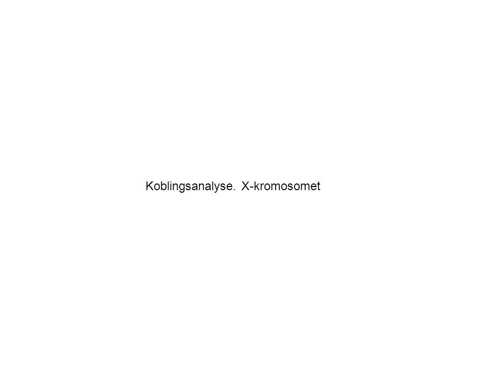 Koblingsanalyse. X-kromosomet