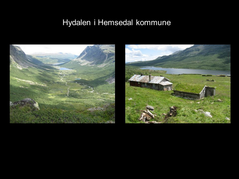 Hydalen i Hemsedal kommune