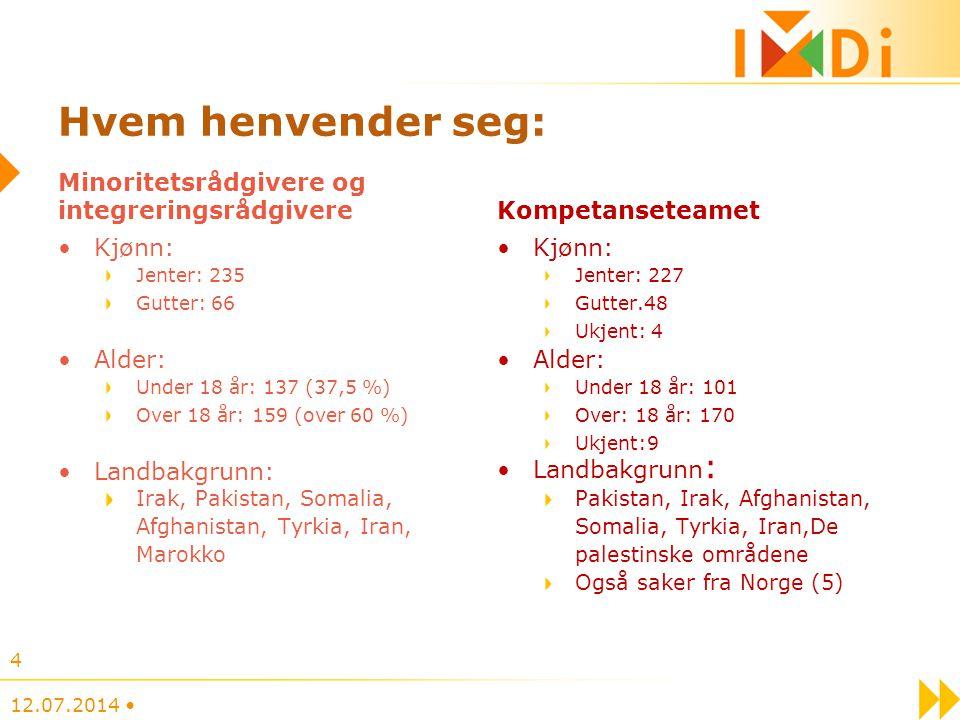 Hvem henvender seg: Minoritetsrådgivere og integreringsrådgivere