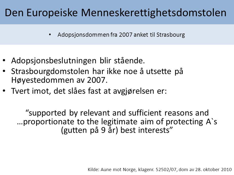 Den Europeiske Menneskerettighetsdomstolen