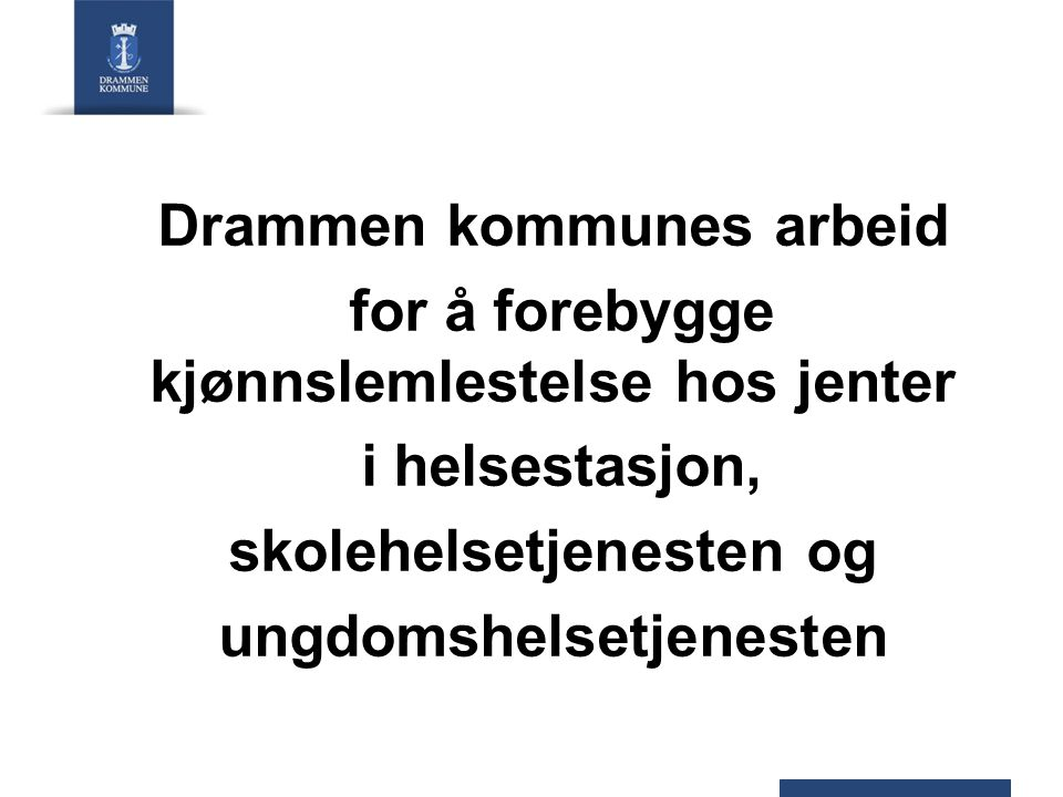 Drammen kommunes arbeid for å forebygge kjønnslemlestelse hos jenter