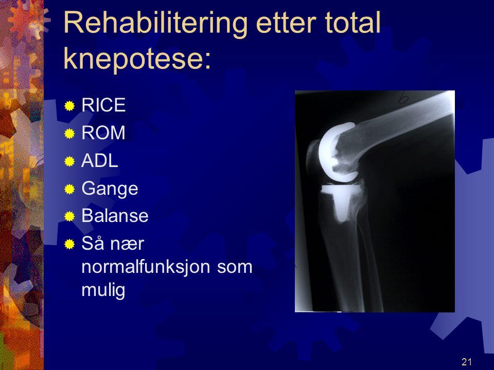 Rehabilitering etter total knepotese: