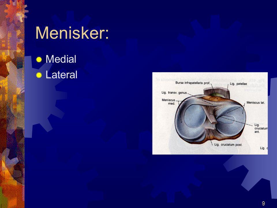 Menisker: Medial Lateral