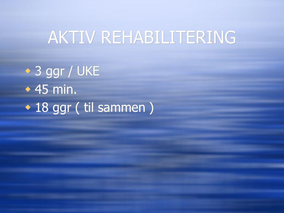 AKTIV REHABILITERING 3 ggr / UKE 45 min. 18 ggr ( til sammen )