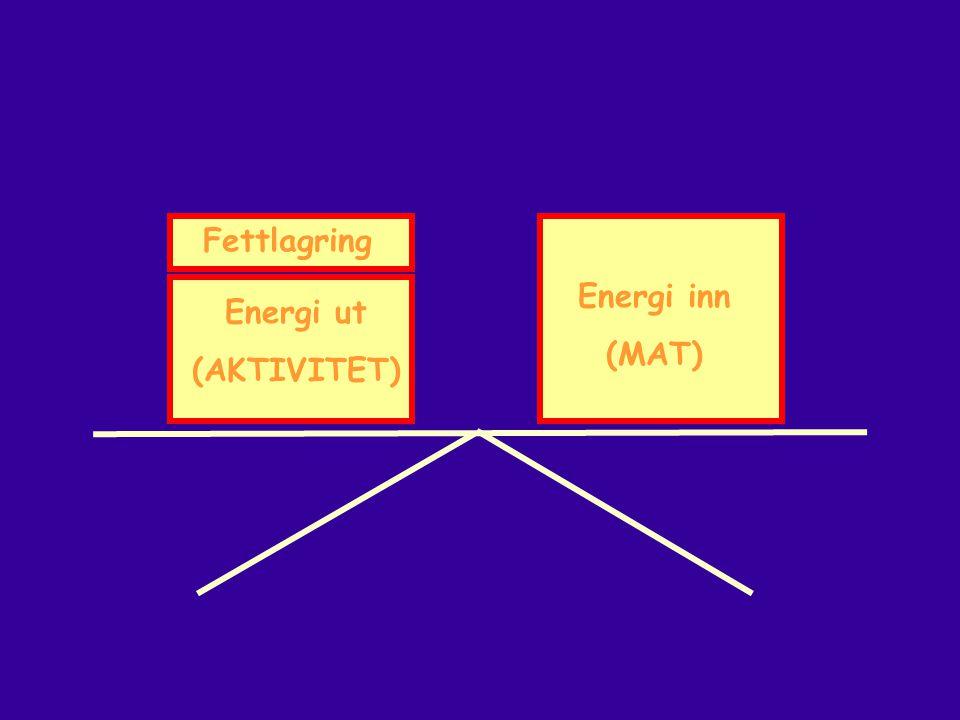 Fettlagring Energi inn (MAT) Energi ut (AKTIVITET)