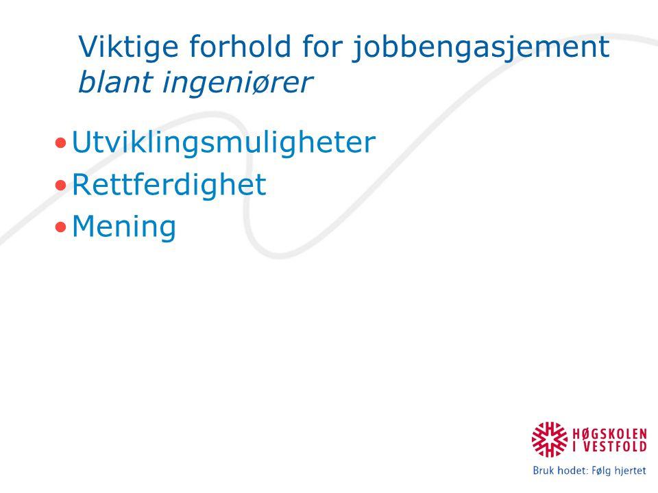 Viktige forhold for jobbengasjement blant ingeniører